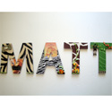 Matt's Jungle 3D Wall Letters