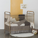 Designer Metallic Crib