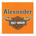 Harley Davidson� Personalized Canvas Art
