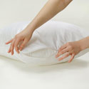 Allergy Control Encasement Pillow Case